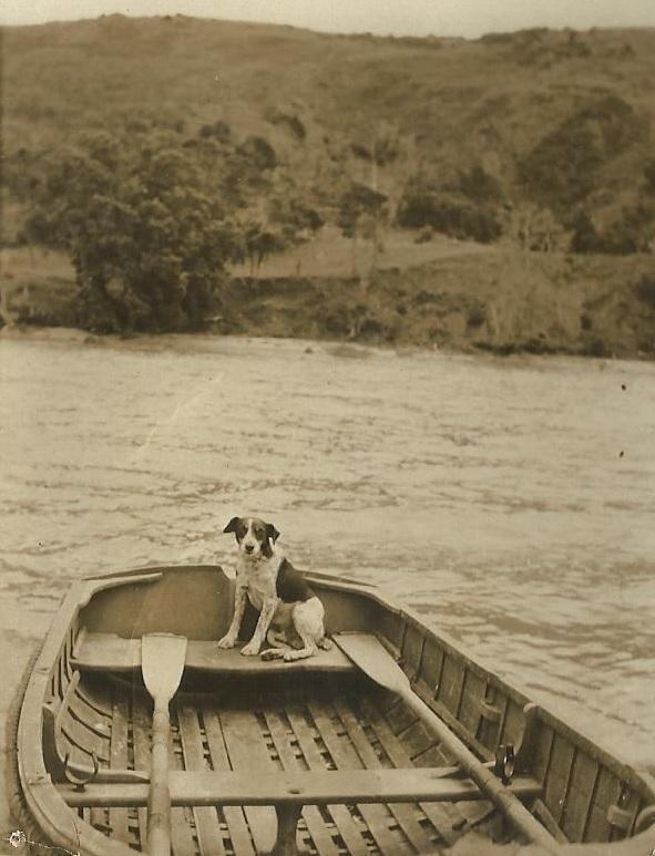 spot-1920s